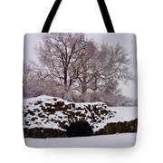 Plymouth Meeting Lime Kilns In The Snow Tote Bag