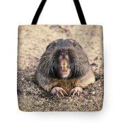 Pocket Gopher Chatting Tote Bag