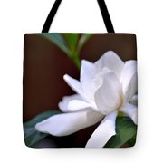 Poetry In White Tote Bag