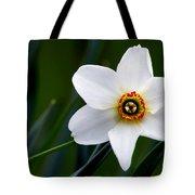 Poet's Daffodil Tote Bag