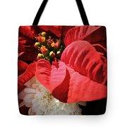 Poinsettia In Bloom Tote Bag
