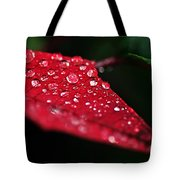 Poinsettia Leaf With Water Droplets Tote Bag
