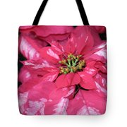 Poinsettia Passion Tote Bag