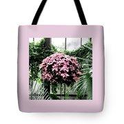 Poinsettia Tree Longwood Gardens Tote Bag