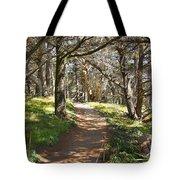 Point Lobos Cypress Path Tote Bag