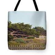 Point Pinos Lighthouse Pacific Grove California Tote Bag