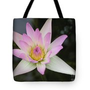 Pointed Pink Lily Tote Bag