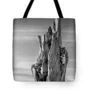 Pointing To The Heavens - Bw Tote Bag