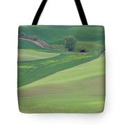 Points Leading Home Tote Bag