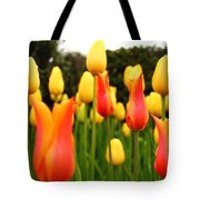 Pointy Tulips Tote Bag