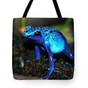 Poison Blue Dart Frog Tote Bag