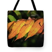 Poison Sumac Golden Kickoff To Fall Colors Tote Bag