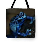Poisonous Blue Frog 02 Tote Bag