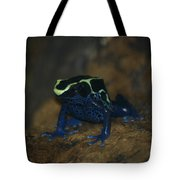 Poisonous Frog 02 Tote Bag
