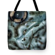 Poisonous Frog Eye Tote Bag