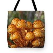 Poisonous Looking Mushrooms Tote Bag