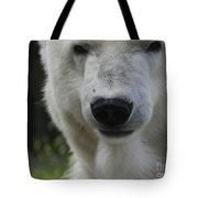 Polar Bear 3 Tote Bag