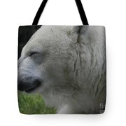 Polar Bear 4 Tote Bag