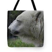 Polar Bear 5 Tote Bag