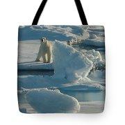 Polar Bear And Cub Tote Bag