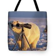 Polar Bear Investigating Photographers Tote Bag