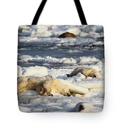 Polar Bear Mother And Cub Grooming Tote Bag