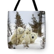 Polar Bear Ursus Maritimus Mother And Cubs Tote Bag