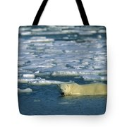Polar Bear Wading Along Ice Floe Tote Bag