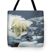Polar Bear With Cubs On Pack Ice Tote Bag