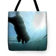 Polar Plunge Tote Bag