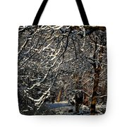 Polar Vortex Beauty Tote Bag