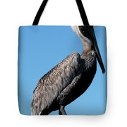 Pole With Pelican  Tote Bag