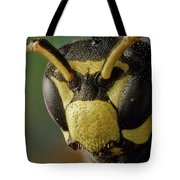 Polistes Dominula 41 Tote Bag