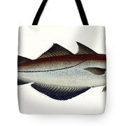 Pollack Tote Bag by Andreas Ludwig Kruger