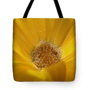 Pollen Sunset Tote Bag