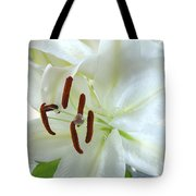 Pollinated White Tiger Lily Tote Bag