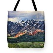 Polychrome Tote Bag by Heather Applegate