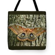 Polyphemus Moth Tote Bag