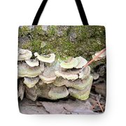 Polypore Abstract Tote Bag