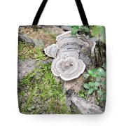 Polypores And Moss Tote Bag