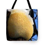 Pom Pom Mushroom Tote Bag