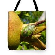 Pomegranate Bug Jewel Case Tote Bag