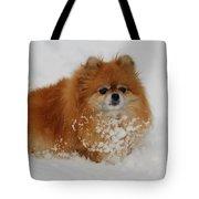 Pomeranian In Snow Tote Bag