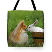 Pomeranian With Rabbit Tote Bag