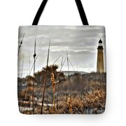Ponce Inlet Lighthouse From The Dunes Tote Bag