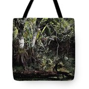 Pond Apple-1 Tote Bag