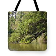 Pond At Norfolk Botanical Garden 10 Tote Bag