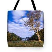 Pond House Views Tote Bag