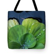 Pond Lettuce Tote Bag