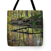 Pond Reflects Tote Bag